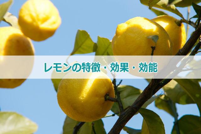 レモンの特徴・効果・効能