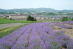 日の出公園(上富良野町)