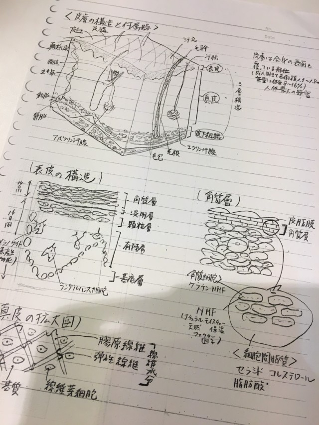 アロマテラピーインストラクター養成講座卒業試験